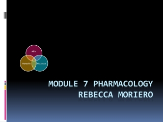 Module 7- Respiratory System Pharmacology