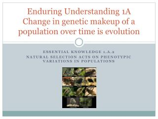 Enduring Understanding 1A Change in genetic makeup of a population over time is evolution