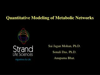 quantitative modeling of metabolic networks