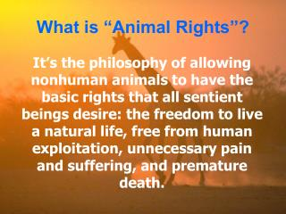 It s the philosophy of allowing nonhuman animals to have the basic rights that all sentient beings desire: the freedom t