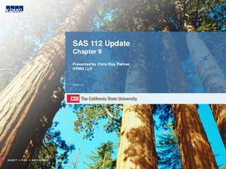 SAS 112 Update Chapter 9  Presented by Chris Ray, Partner KPMG LLP   KPMG LLP