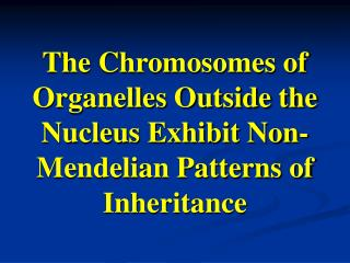 The Chromosomes of Organelles Outside the Nucleus Exhibit Non-Mendelian Patterns of Inheritance