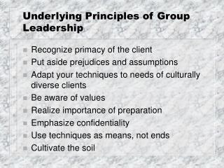 Underlying Principles of Group Leadership