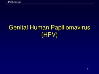 Genital Human Papillomavirus HPV