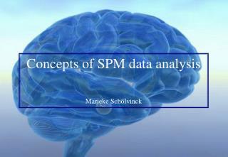 Concepts of SPM data analysis   Marieke Sch lvinck