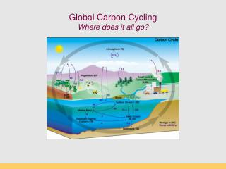Global Carbon Cycling Where does it all go
