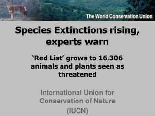 Species Extinctions rising, experts warn