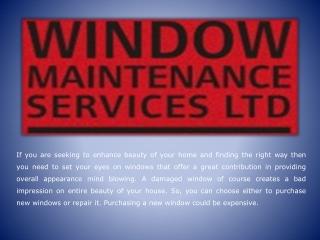 Window Maintenance Services
