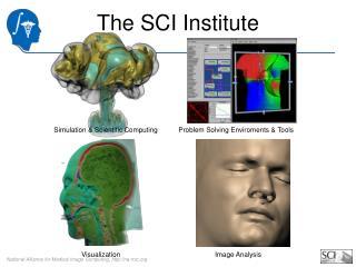 The SCI Institute
