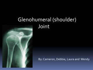 Glenohumeral shoulder Joint