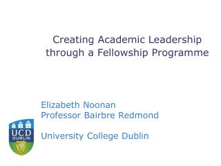 Creating Academic Leadership through a Fellowship Programme