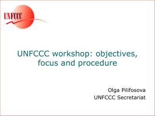 UNFCCC workshop: objectives,  focus and procedure
