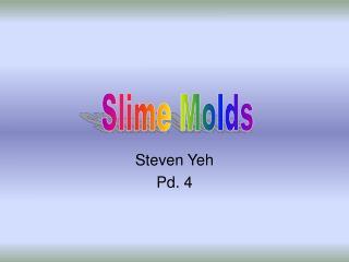 Steven Yeh Pd. 4