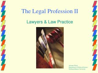 The Legal Profession II