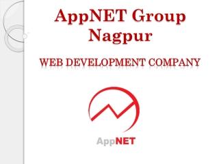 Web Development Company AppNET Group  Nagpur