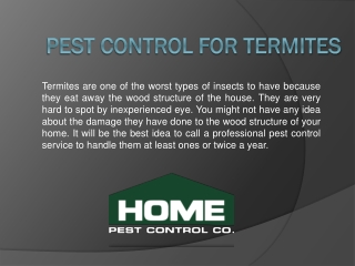 Termite Control Lexington