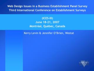 Web Design Issues in a Business Establishment Panel Survey Third International Conference on Establishment Surveys   ICE