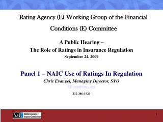 Rating Agency E Working Group of the Financial  Conditions E Committee