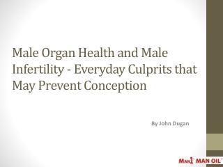 Male Organ Health and Male Infertility - Everyday Culprits