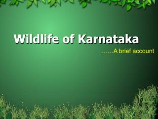 wildlife of karnataka