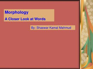 Morphology A Closer Look at Words