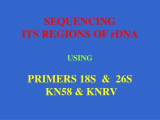 SEQUENCING ITS REGIONS OF rDNA  USING  PRIMERS 18S    26S  KN58  KNRV