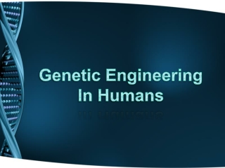 Genetic Engineering In Humans