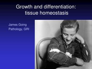 Growth and differentiation:  tissue homeostasis