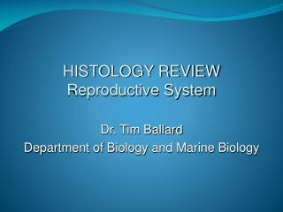 HISTOLOGY REVIEW Reproductive System