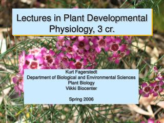 Lectures in Plant Developmental Physiology, 3 cr.