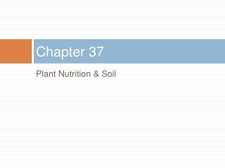 Plant Nutrition  Soil