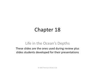 Life in the Ocean s Depths These slides are the ones used during review plus slides students developed for their present