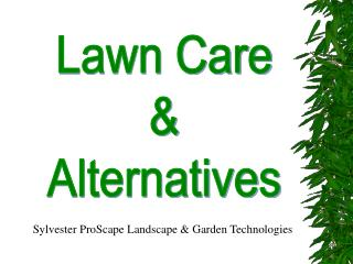 Lawn Care  Alternatives