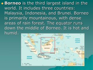 Borneo is the third largest island in the world. It includes three countries: Malaysia, Indonesia, and Brunei. Borneo is