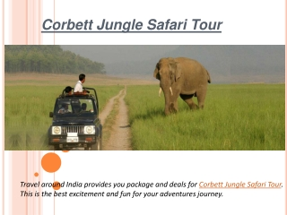 Adventures jungle safari tour in india
