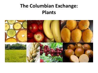 The Columbian Exchange: Plants