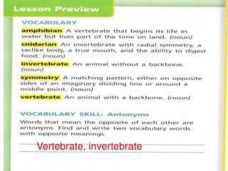 Vertebrate, invertebrate
