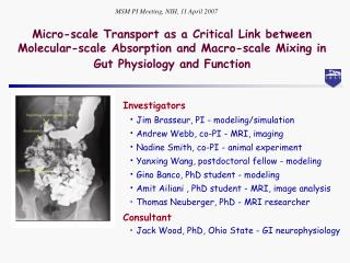 Micro-scale Transport as a Critical Link between  Molecular-scale Absorption and Macro-scale Mixing in Gut Physiology an