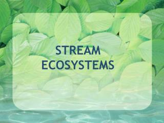 STREAM  ECOSYSTEMS