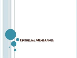 Epithelial Membranes