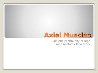 histology part ii salt lake community college human anatomy lab
