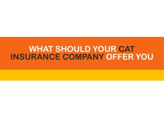 What Should Your Cat Insurance Company Offer You