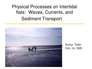 Physical Processes on Intertidal flats:  Waves, Currents, and Sediment Transport