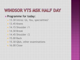 Windsor VTS MSK Half day