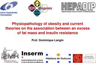 physiopathology of obesity and current theories on the association between an excess of fat mass and insulin resistance