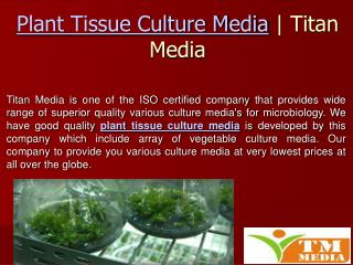 Plant Tissue Culture Media - What Are The Uses In Growing Mi