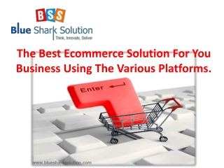 The Best Ecommerce Solution For You Business Using The Vario