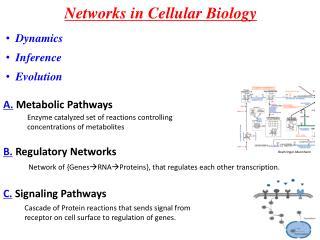 Networks in Cellular Biology