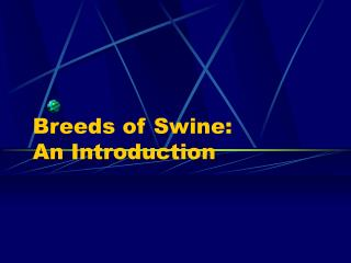 Breeds of Swine:   An Introduction