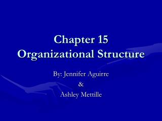 Chapter 15 Organizational Structure